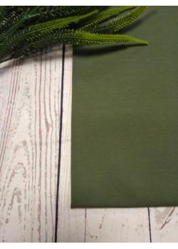 Ткань футер 2 нитка с лайкрой Хаки